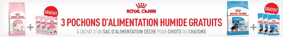 Royal Canin humide
